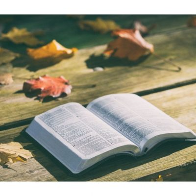 Devotions in a Chaotic, Interrupted Life